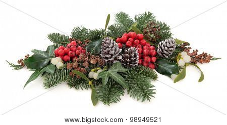 Christmas and winter flora with holly, mistletoe, pine cones and traditional greenery over white background. poster