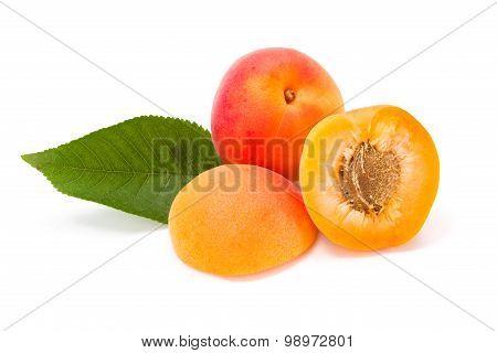 Peaches On White (prunus Persica)