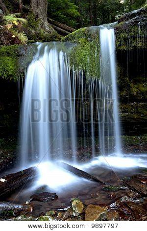 The tranquil Fern Falls.