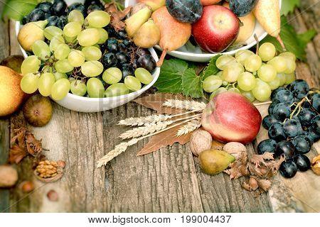 Fresh organic seasonal fruit, autumn fruit - autumn harvest on rustic table