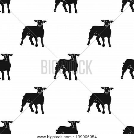 Little white mountain sheep.Scottish fold sheep.Scotland single icon in black style vector symbol stock web illustration.