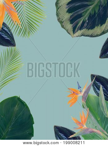 tropical flowers and leaves - border of fresh strelizia bird of paradize flowers and exotic palm leaves on blue backgroundotic palm leaves on blue background