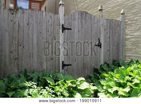 Length of rough - hewn gray fencing with black wrought iron hardware, and lush ground cover of plants below.