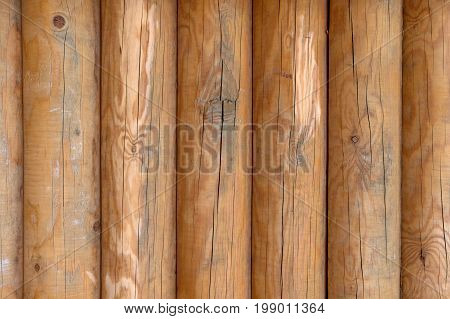 Closeup Of Wooden Stakes