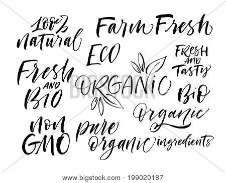 Set of eco phrases. 100% natural organic non gmo bio tasty and fresh Ink illustration. Modern brush calligraphy. Isolated on white background.