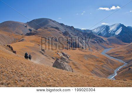Three hunters on horses in mountains Tien-Shan. The Issyk-Kul region Kyrgyzstan