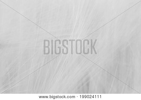 Blurred Gray Abstract Background With A Predominance Of Lines