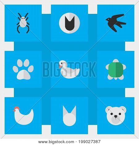 Elements Sparrow, Swan, Tomcat And Other Synonyms Tomcat, Cute And Tortoise.  Vector Illustration Set Of Simple Zoo Icons.