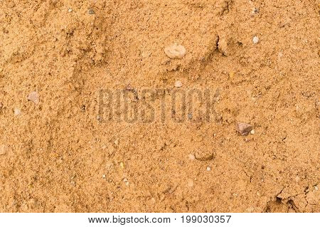 wet yellow summer sand texture. beach background.