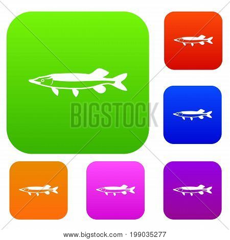 Saury set icon in different colors isolated vector illustration. Premium collection