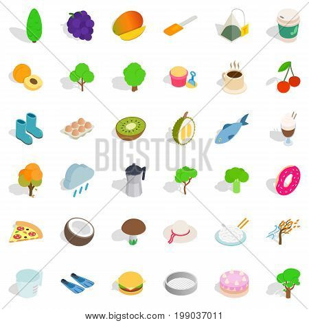 Vegetarian cook icons set. Isometric style of 36 vegetarian cook vector icons for web isolated on white background