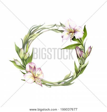 Frame with alstroemeria. Hand draw watercolor illustration