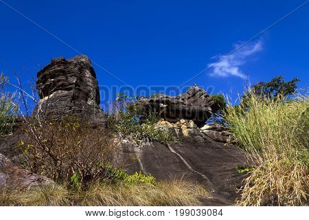 Forest stone and blue sky at Phu Pha thoep National Park Mukdahan county of Thailand