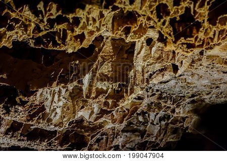 Box work formations in Wind Cave National Park South Dakota