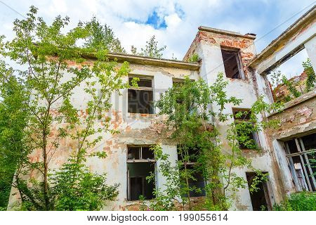 Front facade of an abandoned building overgrown trees