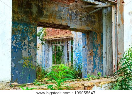 ruins of an ancient abandoned building covered by vegetation
