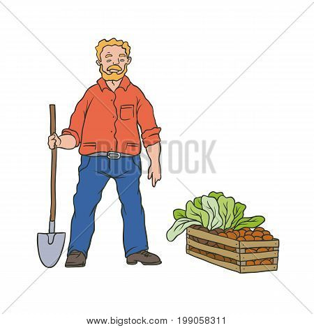 Vector sketch coloured illustration of farmer. Man worker with shovel and box vegetables. Autumn gardening harvest. Drawn contour cartoon character peasant working in garden. Isolated on white ground