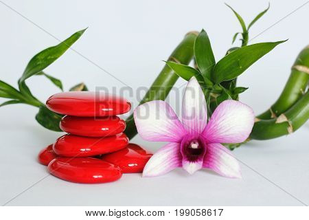 Red pebbles arranged in zen lifestyle with two bicoloured orchids on the right side of the twisted bamboo set at the back all on a white background