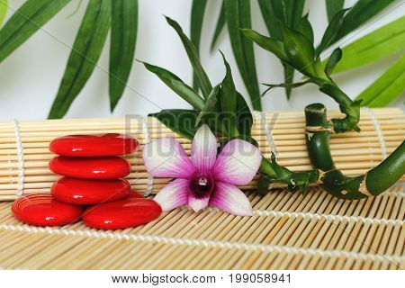 Red pebbles arranged in Zen lifestyle with a two-tone orchid on the right side of bamboo twisted on wooden floor