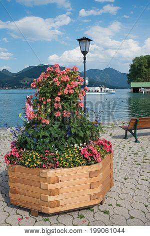 Colorful Flowerpot With Geranium, Salvia, Begonia, Sanvitalia And Nemesia, Lakeside Promenade Bad Wi