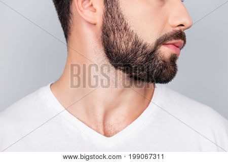 Advertising Barbershop Concept. Profile Side Cropped Portrait Of Handsome Brunet Bearded Young Man.
