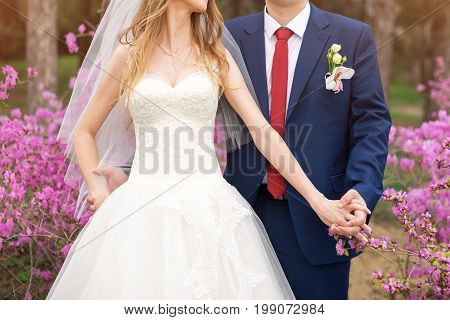 Bride and groom on their wedding day. Elegant wedding couple posing together outdoors on a wedding day enjoying romantic moments in blooming garden
