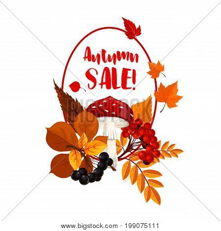 Autumn season sale poster. Fall nature, forest mushroom and berry, autumn foliage of maple and chestnut tree, rowanberry branch and fly agaric for discount price tag and retail themes design