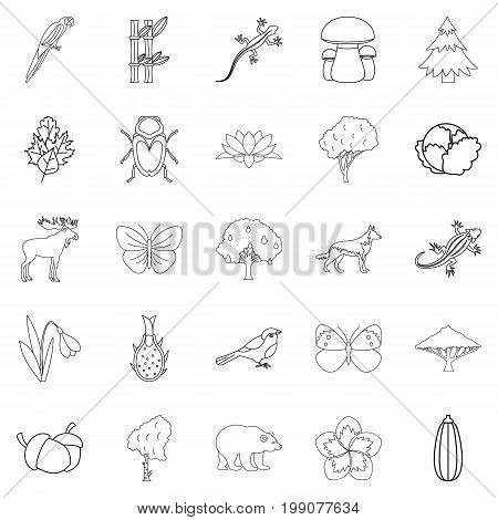 Forest animal icons set. Outline set of 25 forest animal vector icons for web isolated on white background