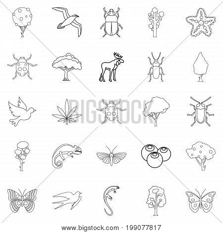 Woody icons set. Outline set of 25 woody vector icons for web isolated on white background