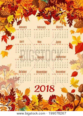 Calendar template of autumn nature season leaf. 2018 year calendar with fall leaves, orange and red maple tree foliage, forest acorn, rowan berry branch and pine cone frame