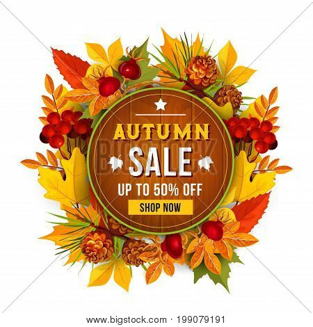 Autumn sale shopping poster for September seasonal discount promo of 70 percent off. Vector autumn foliage background of maple, oak or elm and rowan tree leaf, berry harvest and pine or fir cone