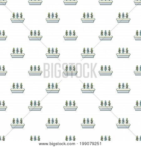 Outdoor potted plants pattern in cartoon style. Seamless pattern vector illustration