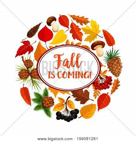 Hello autumn poster of fallen leaves and mushroom. Yellow foliage of maple, chestnut and forest tree, wild mushroom, red berry of rowanberry fruit, pine and fir cone for autumn nature season design
