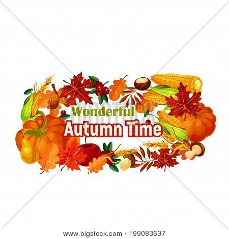 Autumn Time poster of seasonal harvest pumpkin, corn or mushrooms and forest berry. Vector autumn nature and falling leaf of maple, birch or poplar and aspen with oak acorn for holiday greeting card