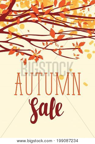 Vector banner with the words Autumn sale. Autumn landscape with autumn leaves on the branches of trees in a Park or forest. Can be used for flyers banners or posters.