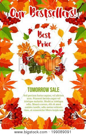 Autumn sale poster for seasonal shopping discount and bestseller offer. Vector best price design of pumpkin, autumn tree foliage of maple, oak acorn or elm and poplar or aspen falling leaves