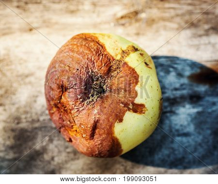 single Rotten apple in a wooden background