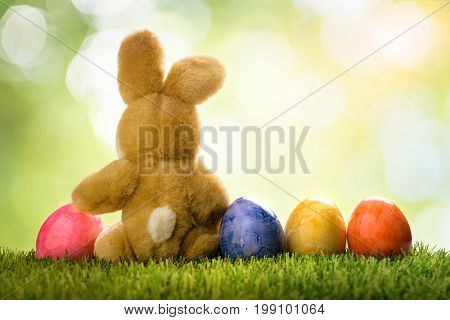 Colorful easter eggs and rabbit or bunny on green grass over bokeh in springtime