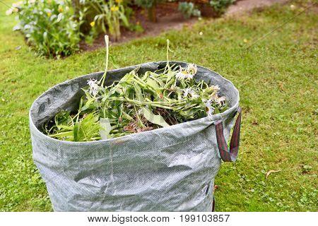 Garden Weed Bag