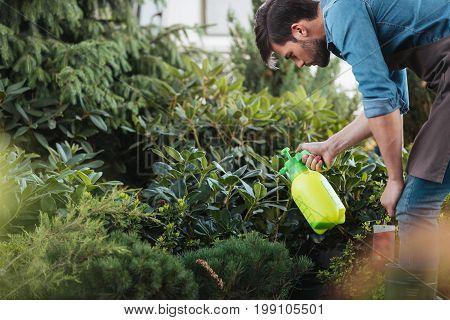 Side View Of Gardener Spraying Plants While Working In Garden