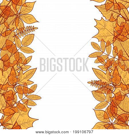 Seamless vertical borders of colorful transparent skeleton autumn leaves hello autumn. Vector
