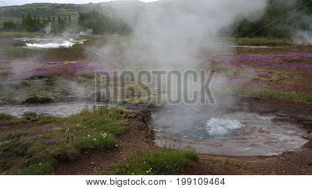 Two bubbling little geysers on geyser field as a part of   Golden Circle in Iceland