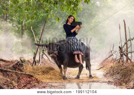 Asian rural woman listening the song via vintage music player on the buffalo at the countryside soft focus and color tone style process Countryside Lifestyle concept