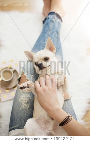 A Young Woman Wearing Distressed Jeans Sitting On Wood Floor On A White Fur Carpet At Home And Cares