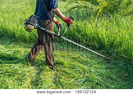 The Gardener Cutting Grass By Lawn Mower