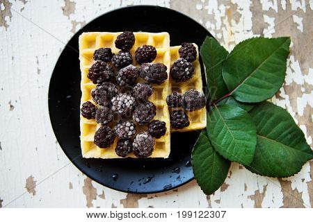 Belgian waffles with blackberries on a wooden background with green leaves.