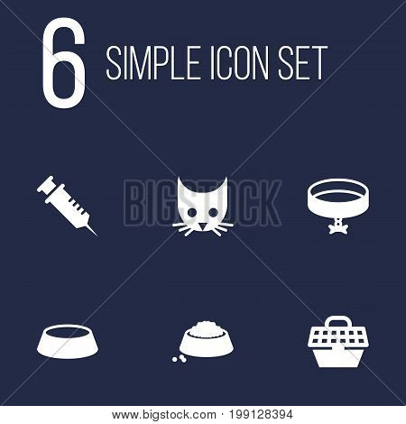 Collection Of Cat , Neckband , Injection Elements.  Set Of 6 Animals Icons Set.
