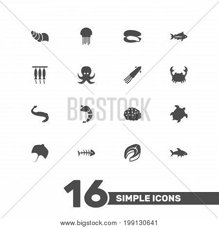 Collection Of Crustaceans, Beefsteak, Lobster And Other Elements.  Set Of 16 Sea Icons Set.