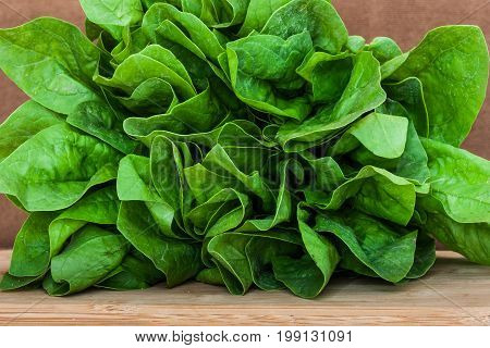Fresh bunch of spinach on a wooden board