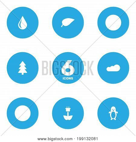 Collection Of Green Power, Blob, Polar Bird And Other Elements.  Set Of 6 Nature Icons Set.